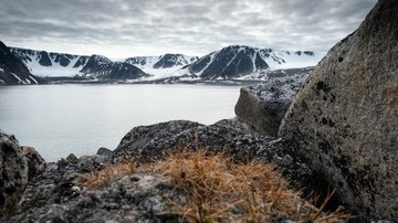 Nature-at-the-Chermside-island-Svalbard-HGR-123424 500